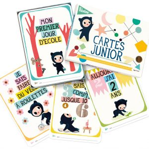 cartes junior milestone 2